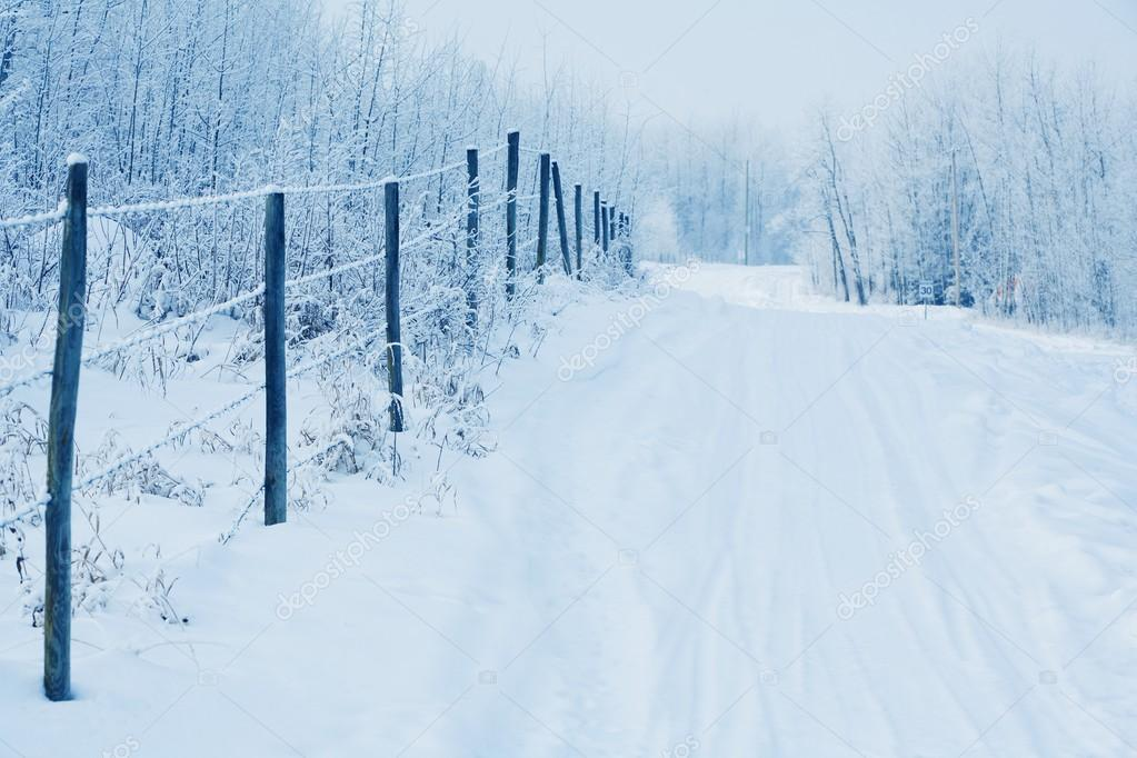 Tracks In The Snow By A Fence