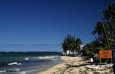 Caribbean Beach And Marina