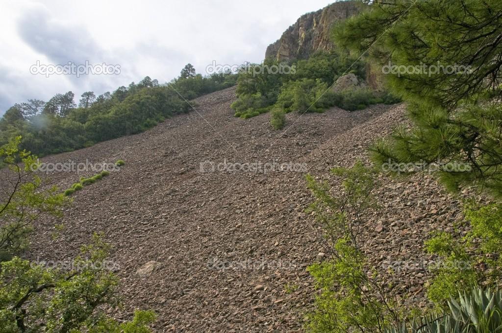 Rock Slide, Chiricahua Mountains, Arizona, USA