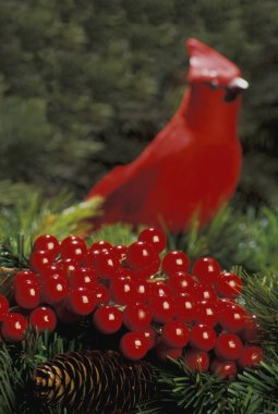 Holly Berries With Red Bird In Background