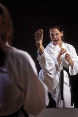Close Up Of Woman doing Martial Arts stock vector