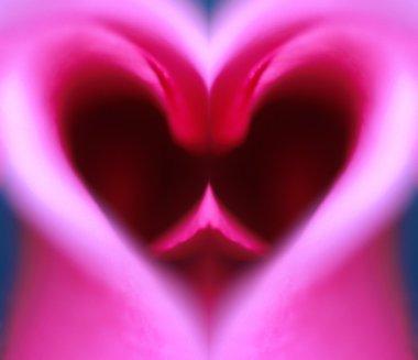 Pink Heart-Shaped Flower Petals