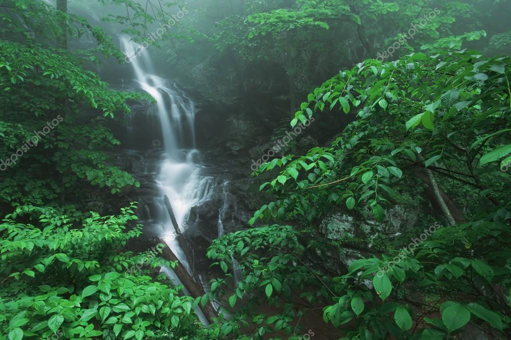 Fog And Lush, Green Foliage Surround Lower Doyles River Falls