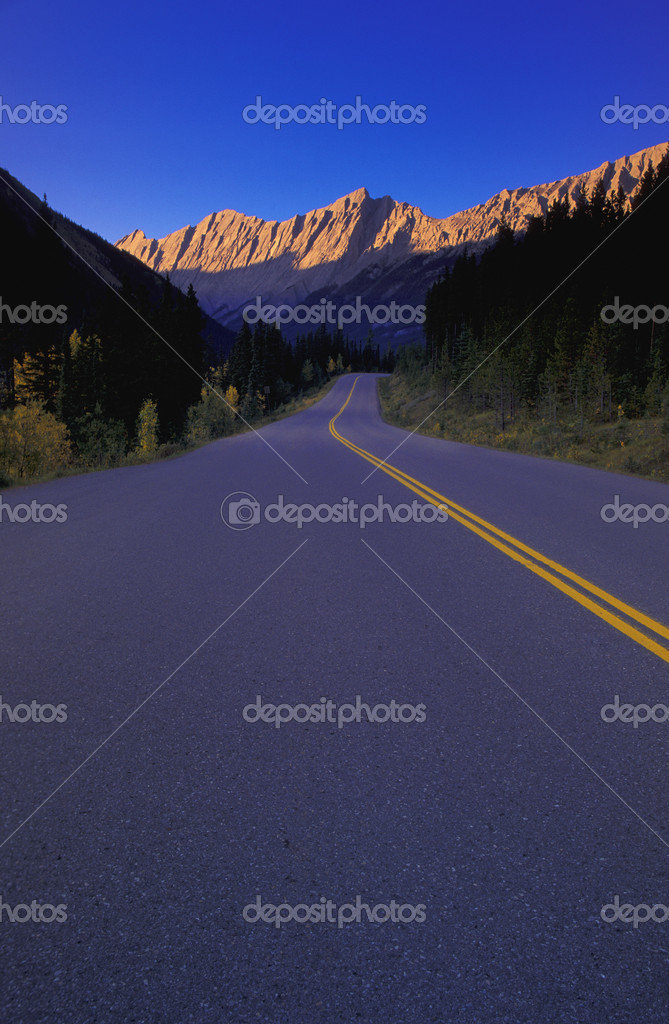 Road in the woods and mountains