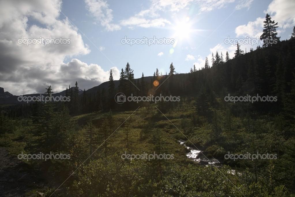 Back Country, Jasper National Park, Alberta, Canada