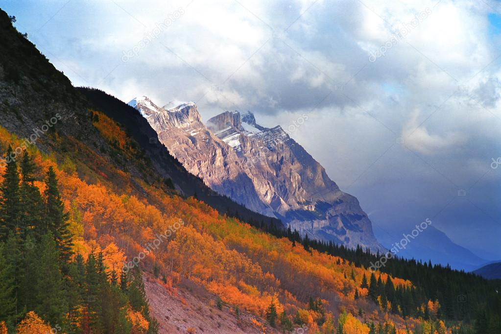 Mountain Slope In Fall