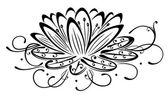 Lotus, virágok