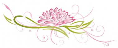 Lotus, abstract, flowers