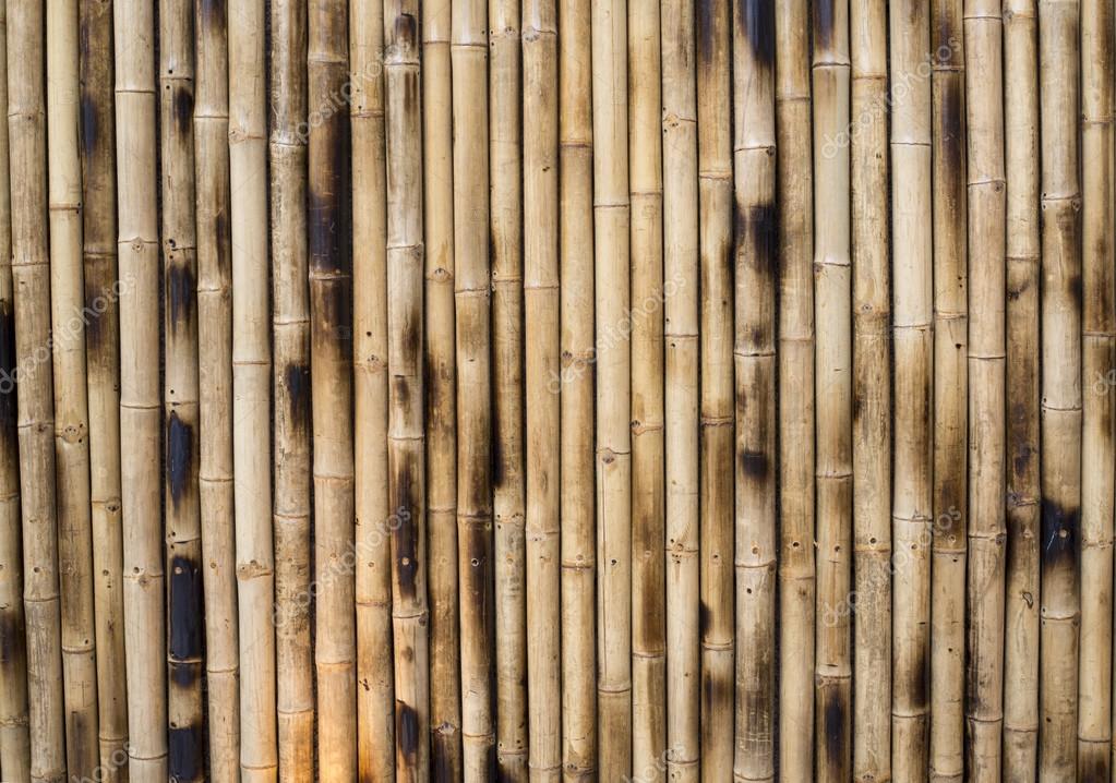 Colunas De Bambu Seco Fotografias De Stock C Vittavat A 31964109 - Bambu-seco