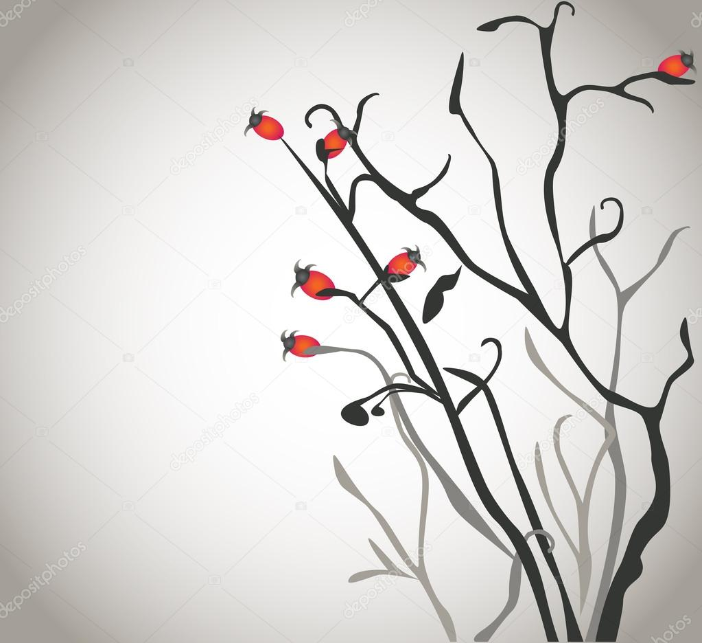 Isolated brier bush with red berries on blank background
