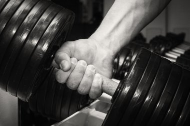 Hand holding a dumbbell.