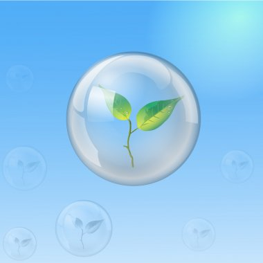 Glass sphere with sprout, ecology