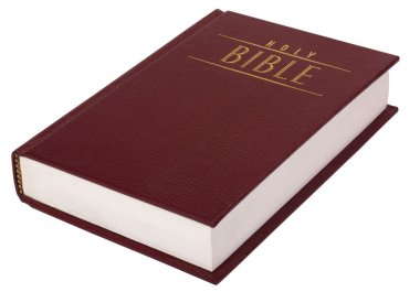 Close-up of the Bible stock vector