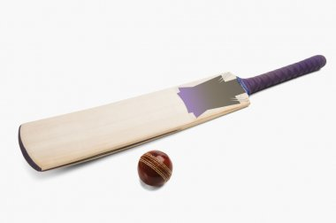 Cricket ball with a bat