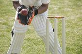 Cricket-Korbflechter fängt einen Ball