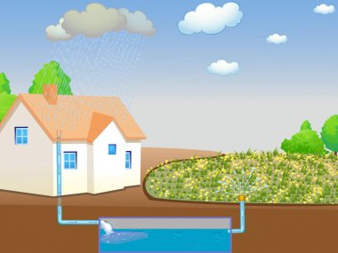 Illustration showing rainwater harvesting