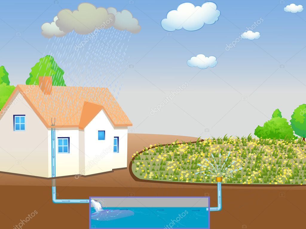 Illustration showing rainwater harvesting