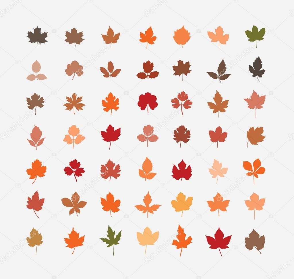 Renkli Sonbahar Yaprakları çizimi Stok Vektör Sky Designs 37863705