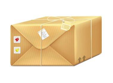 Vector Box Parcel