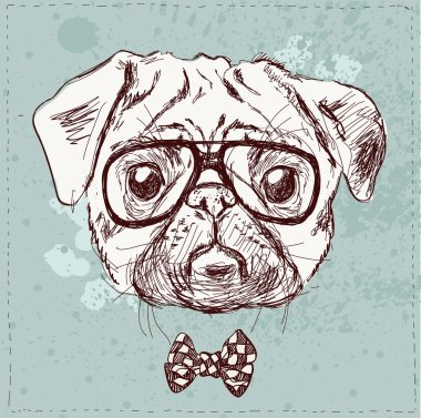 hipster pug dog with glasses
