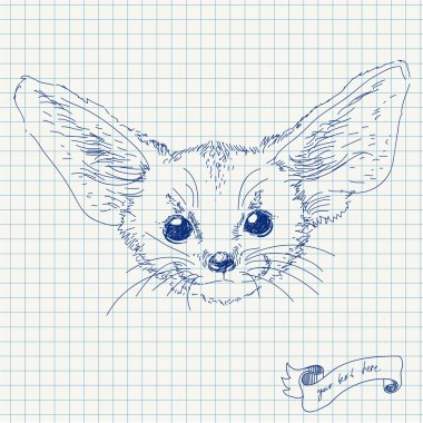 Vector illustration of fox with big ears isolated head on squared paper