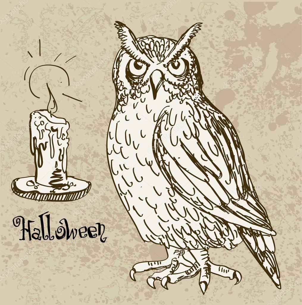 Vector illustration of halloween owl with candle