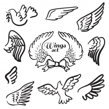 Wings. Set of design elements.