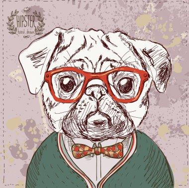 Vintage illustration of hipster pug dog