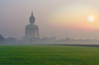 The Big Buddha at Wat Muang Temple with fog and grass when sunri