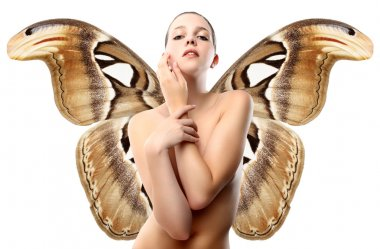 Nude woman with butterfly wings, isolated on white background