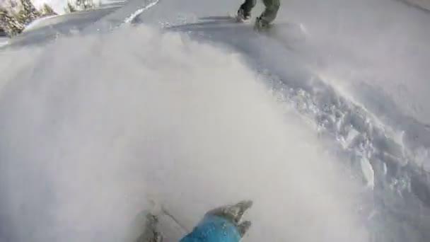 snowboardisty na koni prášek