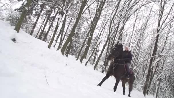 žena a její koně motali v čerstvém sněhu