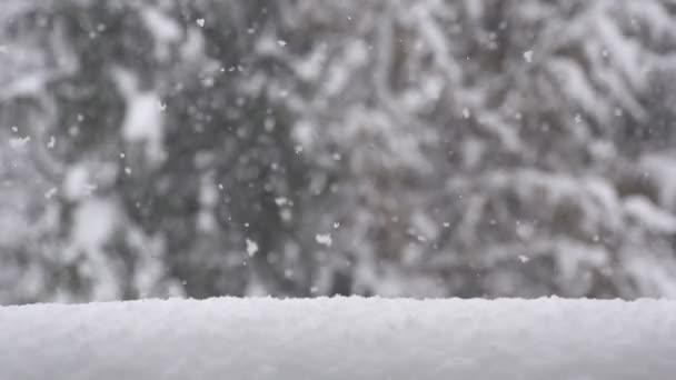 hó hullott