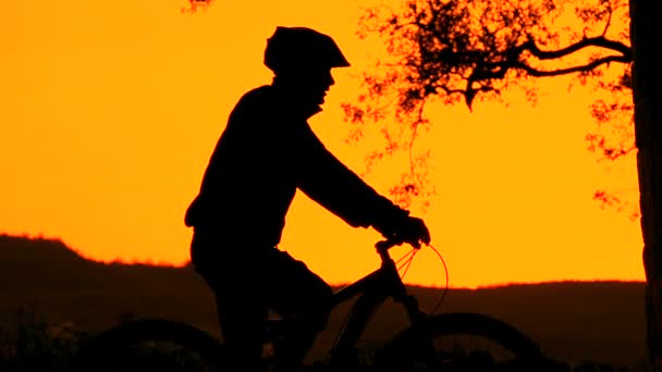Mountain biker silueta