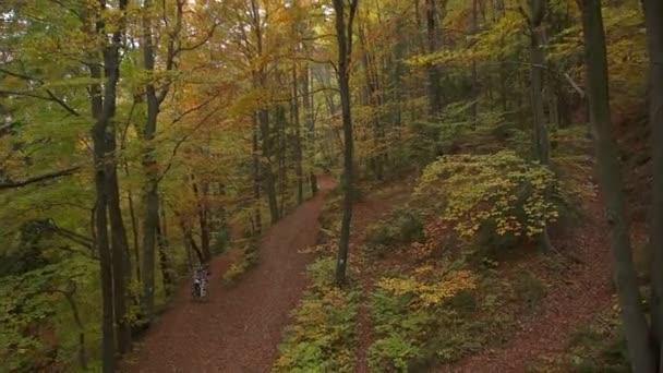 na kole v lese