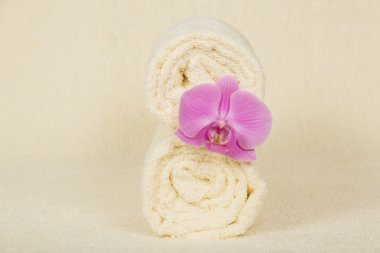 The towels a roll decorated with a flower of an orchid on a terry cloth