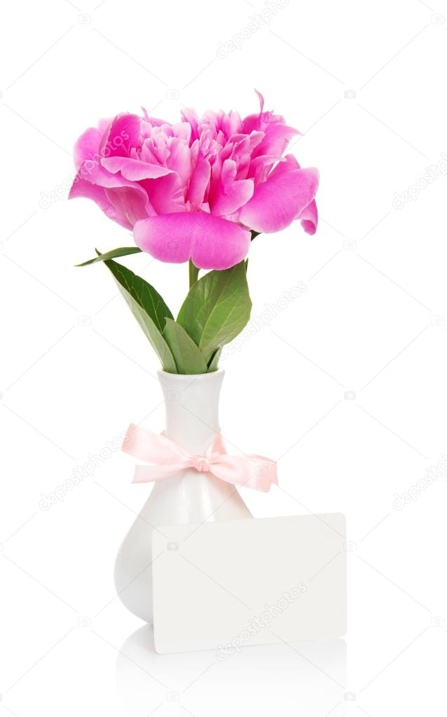 Pink Peony In A Vase Decorated With A Ribbon And An Empty Card For