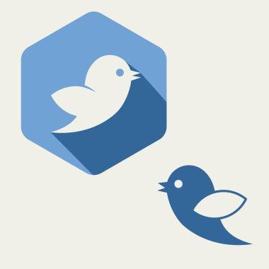 Hexagonal bird twitter social media web or internet icon