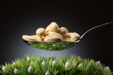 Spoon with cashews