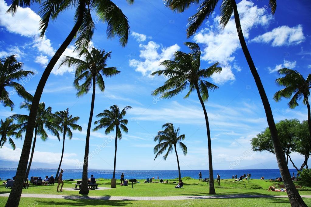Beautiful tropical beach in Hawaii