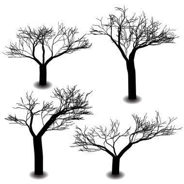 Four die tree silhouette