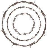 Fotografia anelli di filo spinato