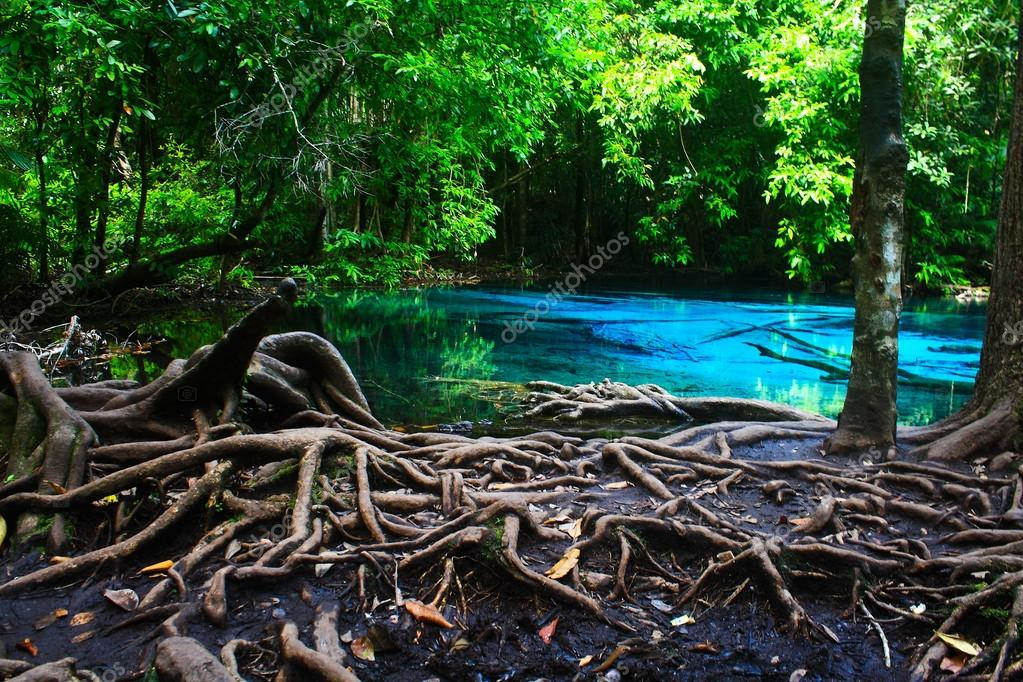Emerald Pool.
