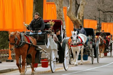 Horse Carriage and Christo's The Gates in NYC's Central Park