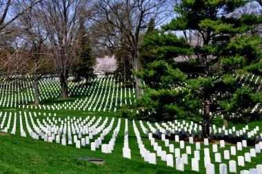 Arlington, VA: Graves at Arlington National Cemetery