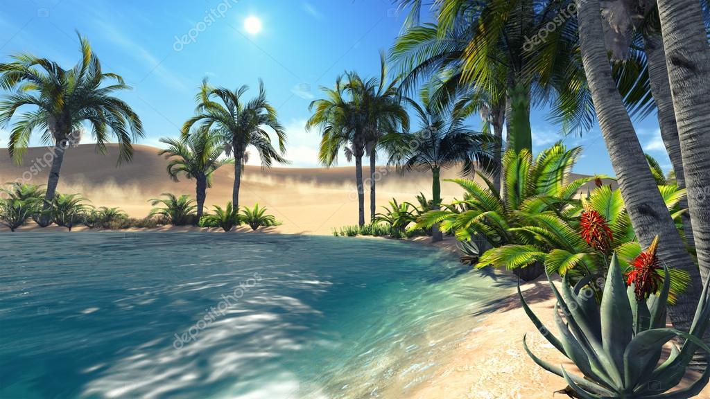 Oasis in the desert 2