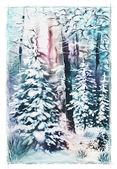 Fotografie Winterlandschaft