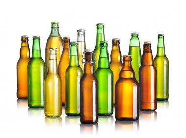 Set of beer bottles