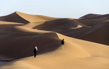 Hamada du Draa Morocco desert