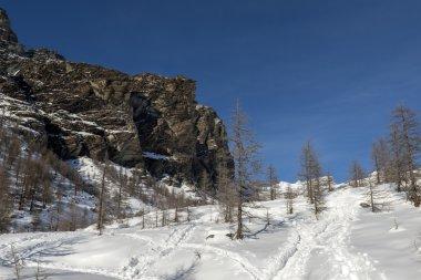 Mount Verra, Ayas valley (North Italy)